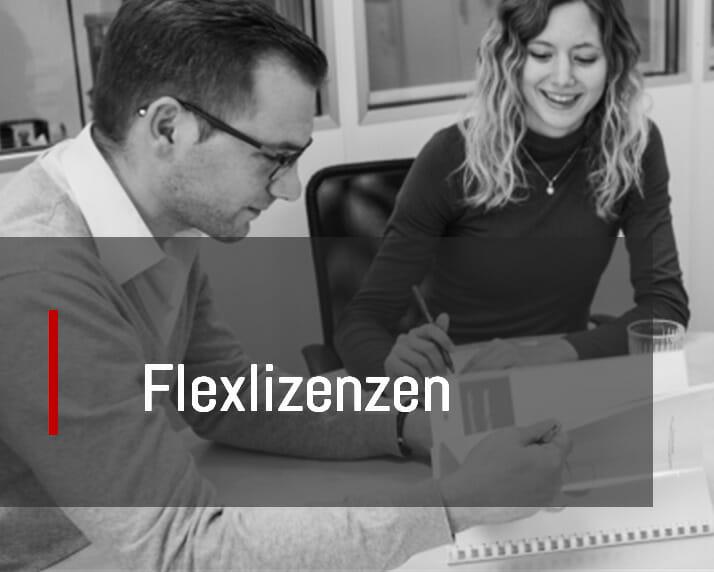 Information Flexlizenzen
